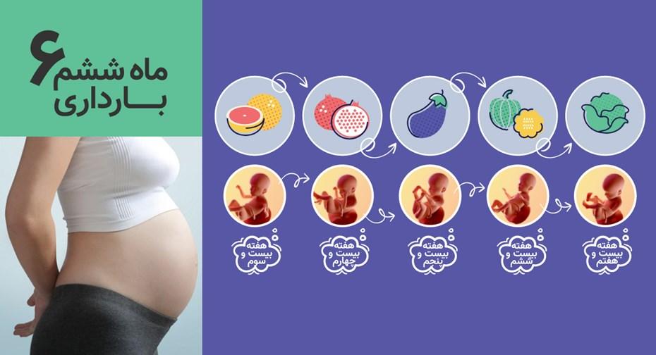 ماه ششم بارداری
