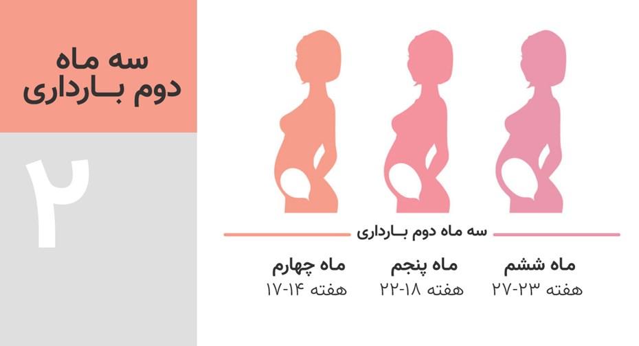 سه ماه دوم بارداری