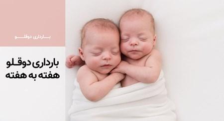 بارداری دوقلو هفته به هفته