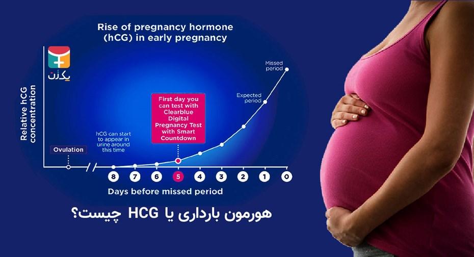 هورمون بارداری یا HCG چیست؟